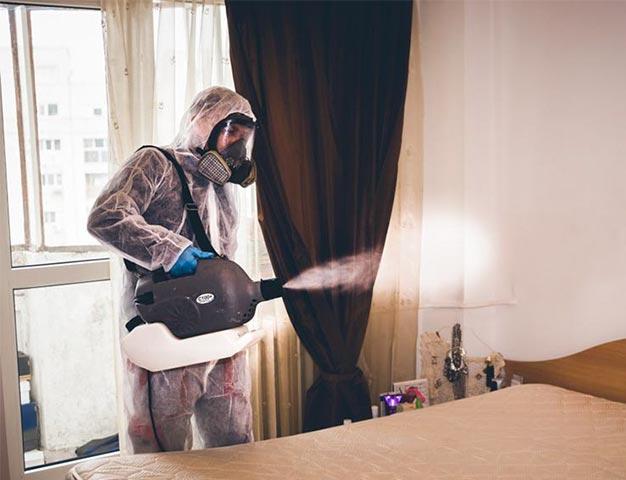servicii dezinfectie timisoara